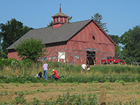 Fields and barn at campus farm