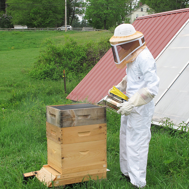 For One Brave Student, It's Bee Season